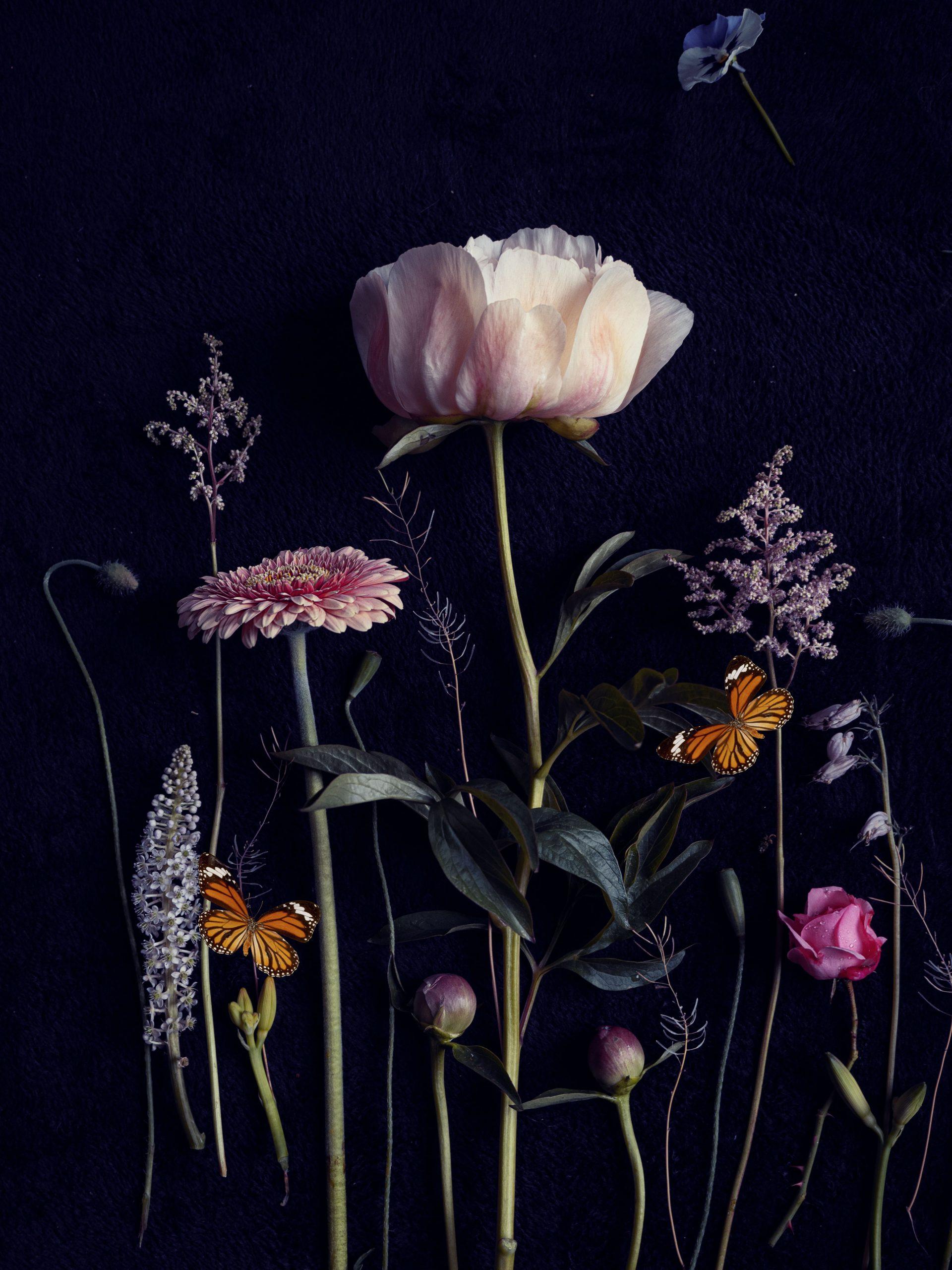 Bloemportret, Flowerportrait by InekeVJ, flatlay, stilllfe